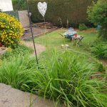 garden renovation in Midsomer Norton(Copy)